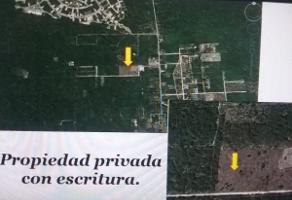 Foto de terreno comercial en venta en  , komchen, mérida, yucatán, 13568272 No. 01