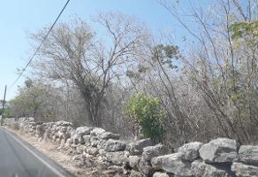 Foto de terreno comercial en venta en  , komchen, mérida, yucatán, 13568282 No. 01