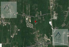 Foto de terreno habitacional en venta en  , komchen, mérida, yucatán, 15455305 No. 01