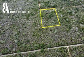 Foto de terreno comercial en venta en  , komchen, mérida, yucatán, 19133631 No. 01