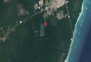 Foto de terreno habitacional en venta en kukulkan , tulum centro, tulum, quintana roo, 6493295 No. 01