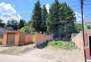 Foto de terreno habitacional en venta en  , la angostura, zacapu, michoacán de ocampo, 0 No. 01