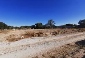 Foto de terreno habitacional en venta en  , la arena, pesquería, nuevo león, 0 No. 01