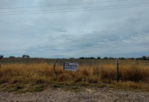 Foto de terreno comercial en venta en  , la asuncion, jalostotitlán, jalisco, 14617782 No. 01