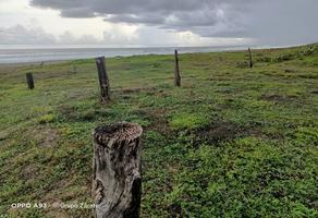 Foto de terreno habitacional en venta en  , la barra de colotepec, santa maría colotepec, oaxaca, 0 No. 01