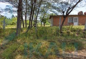 Foto de terreno habitacional en venta en  , la barra norte, tuxpan, veracruz de ignacio de la llave, 0 No. 01