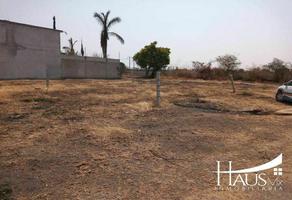 Foto de terreno habitacional en venta en  , la biznaga, cuautla, morelos, 0 No. 01