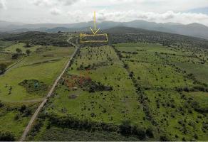 Foto de terreno habitacional en venta en la biznaga , san miguel de allende centro, san miguel de allende, guanajuato, 0 No. 01