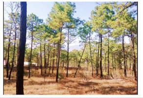 Foto de terreno comercial en venta en la campiña 1, valle dorado norte, morelia, michoacán de ocampo, 16948792 No. 01