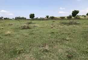Foto de terreno habitacional en venta en  , la cañada, totolapan, morelos, 18347028 No. 01