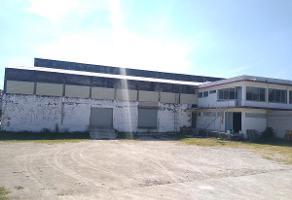 Foto de nave industrial en renta en  , la cerillera, jiutepec, morelos, 16309083 No. 01