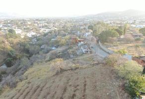 Foto de terreno habitacional en venta en la chigulera 1, la chihuilera, oaxaca de juárez, oaxaca, 0 No. 01