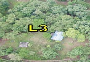 Foto de terreno habitacional en venta en  , la colmena de abajo, allende, nuevo león, 11486833 No. 01