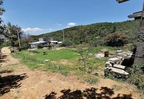 Foto de terreno habitacional en venta en la encinera , ejido guadalupe victoria, oaxaca de juárez, oaxaca, 15001457 No. 01