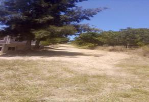 Foto de terreno habitacional en venta en la encinera , ejido guadalupe victoria, oaxaca de juárez, oaxaca, 15001459 No. 01