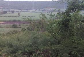Foto de terreno habitacional en venta en  , la esperanza, cuautla, morelos, 14239336 No. 01