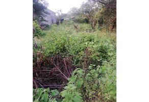 Foto de terreno habitacional en venta en  , la esperanza, xochitepec, morelos, 0 No. 01