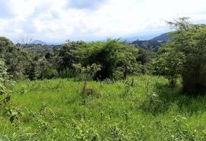 Foto de terreno habitacional en venta en la florida 11, la orduña, coatepec, veracruz de ignacio de la llave, 20734744 No. 01