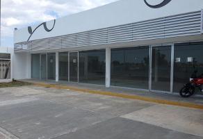Foto de local en renta en  , la florida, mérida, yucatán, 12585699 No. 01
