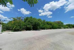 Foto de terreno habitacional en venta en  , la florida, mérida, yucatán, 21015392 No. 01