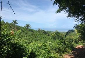 Foto de terreno habitacional en venta en la gloria , matanchen, san blas, nayarit, 0 No. 01