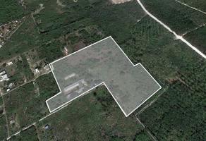 Foto de terreno habitacional en venta en  , la guadalupana, mérida, yucatán, 16171820 No. 01