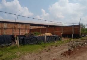 Foto de terreno habitacional en venta en  , la guadalupana, tonalá, jalisco, 6107386 No. 01