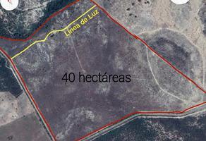 Foto de terreno comercial en venta en la haciendita , los ramones, los ramones, nuevo león, 0 No. 01