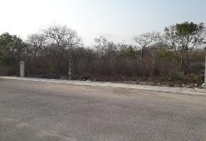 Foto de terreno habitacional en venta en  , la herradura, mérida, yucatán, 0 No. 01