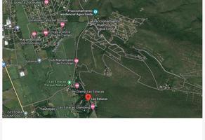Foto de terreno habitacional en venta en la hogareña 1, piedra rodada, tlaltizapán de zapata, morelos, 12780573 No. 01