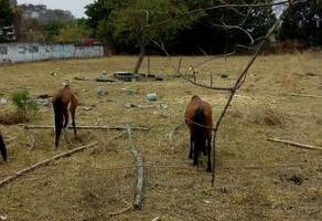 Foto de terreno habitacional en venta en  , la joya, jiutepec, morelos, 11712204 No. 01