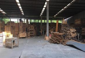Foto de nave industrial en renta en  , la joya, puebla, puebla, 16022025 No. 01