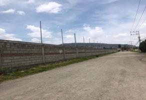 Foto de terreno habitacional en venta en  , la joya, zinacantepec, méxico, 0 No. 01