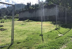 Foto de terreno habitacional en venta en  , la ladrillera, tlalmanalco, méxico, 0 No. 01