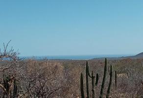 Foto de terreno habitacional en venta en la laguna 1, buenos aires, los cabos, baja california sur, 0 No. 01