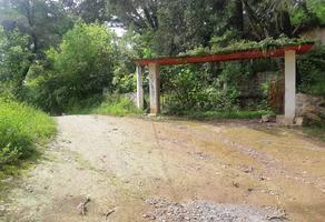 Foto de terreno habitacional en venta en la lagunilla 0 , san miguel chichimequillas de escobedo, zitácuaro, michoacán de ocampo, 18896951 No. 01