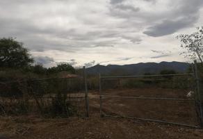 Foto de terreno habitacional en venta en  , la libertad (ejido), victoria, tamaulipas, 11705344 No. 01