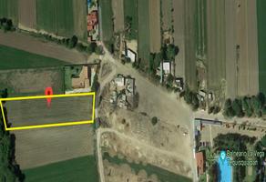 Foto de terreno habitacional en venta en  , la magdalena, tequisquiapan, querétaro, 10817563 No. 01