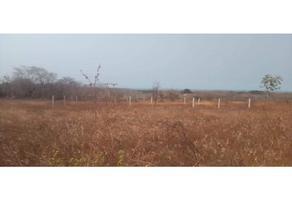 Foto de terreno habitacional en venta en  , la merced del potrero, san miguel del puerto, oaxaca, 0 No. 01