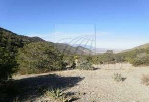 Foto de terreno habitacional en venta en  , la minita, saltillo, coahuila de zaragoza, 0 No. 01