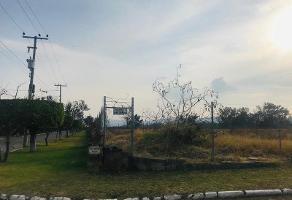 Foto de terreno habitacional en venta en  , la mojonera, zapopan, jalisco, 0 No. 01