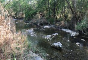 Foto de terreno habitacional en venta en la morita , canoas, montemorelos, nuevo león, 0 No. 01