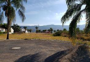 Foto de terreno habitacional en venta en la noria de los reyes , cajititlán, tlajomulco de zúñiga, jalisco, 13124410 No. 01