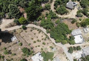 Foto de terreno habitacional en venta en  , la palma, zitácuaro, michoacán de ocampo, 0 No. 01