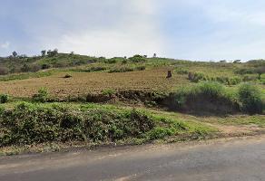 Foto de terreno comercial en venta en la parcela 70 z-3 p1/1 , tepetlixpa, tepetlixpa, méxico, 15936958 No. 01