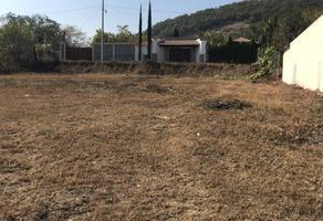 Foto de terreno habitacional en venta en la paz , los maestros, allende, nuevo león, 19495197 No. 01