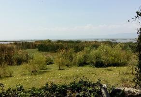 Foto de terreno habitacional en venta en la paz , san antonio tlayacapan, chapala, jalisco, 6847079 No. 01