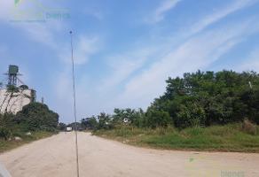 Foto de terreno habitacional en venta en  , la pedrera, altamira, tamaulipas, 12262555 No. 01