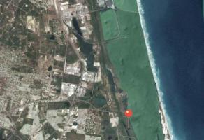 Foto de terreno habitacional en venta en  , la pedrera, altamira, tamaulipas, 15818385 No. 01