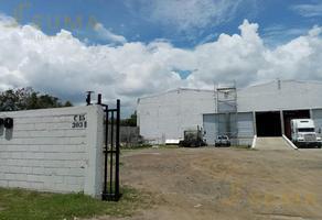 Foto de bodega en renta en  , la pedrera, altamira, tamaulipas, 0 No. 01